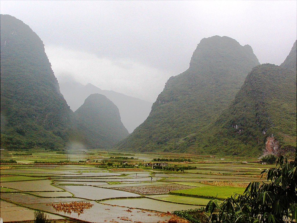 Flooded Fields and Karst Mountains